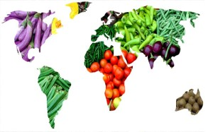 svet-zeleniny