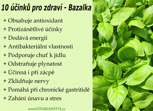 10-ucinku-na-zdravi-bazalka