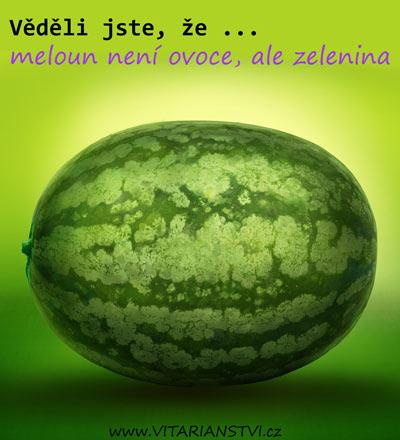 vedeli-jste-ze-meloun
